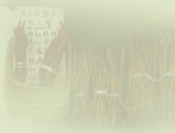 Online resource on chinese herbs. Online prescription tools for practitioners.